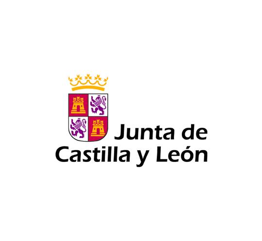 2004 de la junta de castilla y leon: